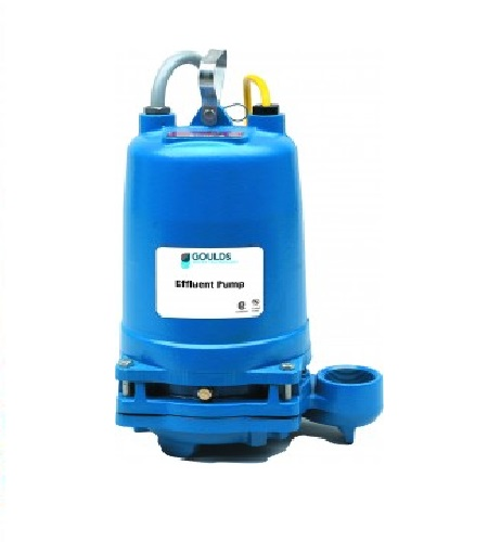 2ED Dual Seal Effluent Pump